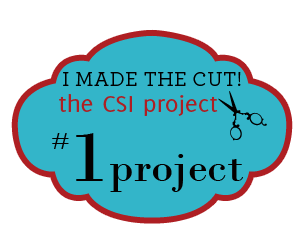 1-Project-300-thecsiproject.com[1]