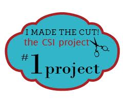 csi #1 project button