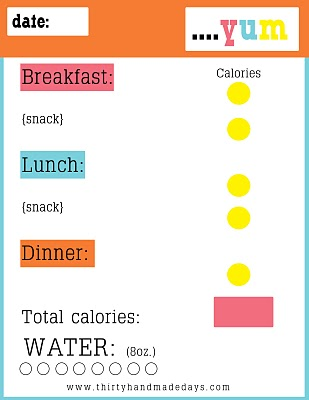 seizure diary template - 30 day diet diary template