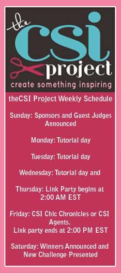 CSI Project Schedule