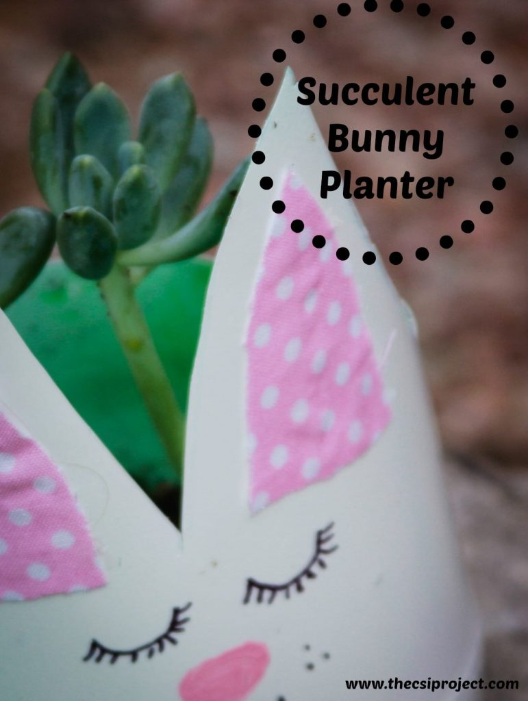 bunnycraft2